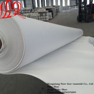 Polypropylene Fabric with Needle Punched Geotextile pictures & photos