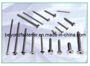 Screw Self Tapping Screw (#5 #6 #7 #8 #10 #12 #14) Fastener pictures & photos