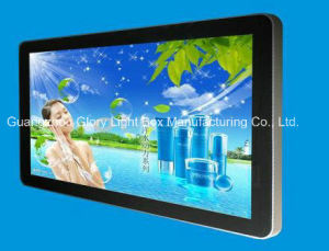 32 Inch LAN/WiFi/3G Network Android Advertising Display pictures & photos
