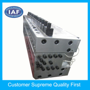Low Cost Adjustable Hollow Grid Plate Extrusion Plastic Molding pictures & photos
