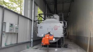 Wns Series Diesel Gas Fired Steam Boiler on Hot Sale! pictures & photos