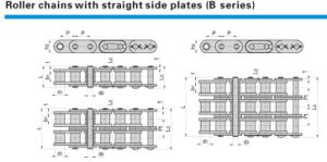 Roller Chains with Straight Side Plates (B series) pictures & photos