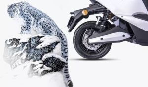 800W Bosch Motor Electric Motorcycle, Snow Electric Motorcycle pictures & photos
