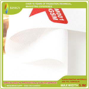 High Tearing Strength PVC Mesh for Outdoor Printing and Building Structure pictures & photos