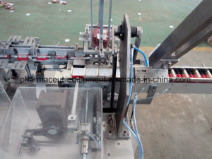 Bsmz-125k Grain Bag Cartoning Machine pictures & photos
