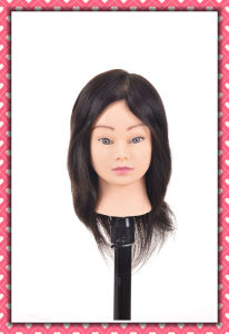 Human Hair Training Head 12inches Real Human Hair Mannequin Head pictures & photos