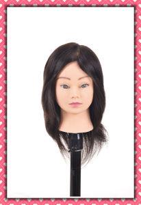 Human Hair Training Head 12inches Real Human Hair Mannequin Head pictures & photos