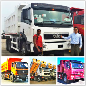 FAW Foton Forland Mini 8 Ton 4X2 Dump Truck pictures & photos