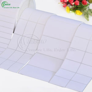 Customed Self-Adhesive Blank Labels in Roll (KG-PL009) pictures & photos