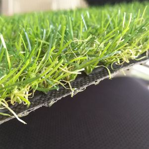 High Quality Hot Sale Four Colours 25mm Height Synthetic Grass Turf for Garden Yard pictures & photos