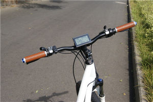 Strong Aluminum Alloy 48V 500W Electric Bicycle /City Ebike pictures & photos