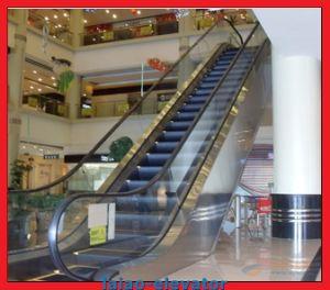 Good Price Passenger Escalator Price pictures & photos
