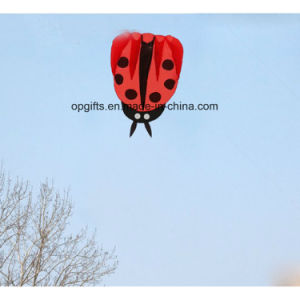 Outdoor Promotional Ladybirdbeetle Kite pictures & photos