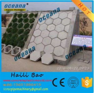 Plastic Moulds for Make Interlock Hexagonal Concrete Paver Products pictures & photos