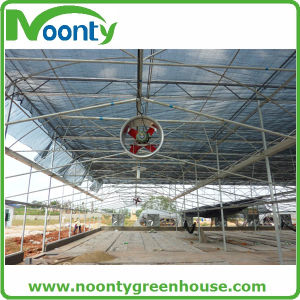 Cooling Pad and Fan System for Greenhouse China Supplier pictures & photos