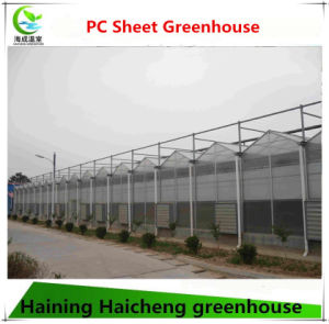 PC Sheet Multi Span Glass Green House for Flowers pictures & photos