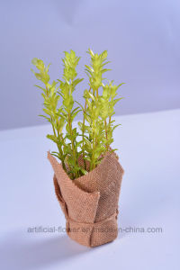 Hand Made Beautiful Artificial Herb Plants in Paper Wrapped for Decoration pictures & photos