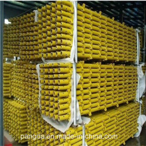 China ISO SGS Quick Stage Scaffolding System pictures & photos