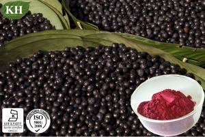 Polyphenols 10%, 40%; Anthocyanidins Acai Berry Extract pictures & photos