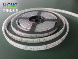 High Quality DC12V LED Strip/ LED Strip Light pictures & photos