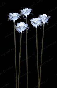 LED White Decoration Rose Recessed Light pictures & photos