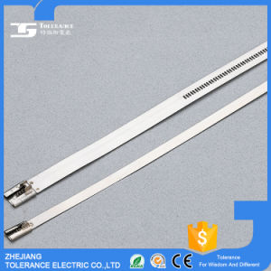 Epoxy Coated Ladder Stainless Steel Cable Ties