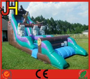 Commercial Inflatable Slide for Outdoor Game pictures & photos