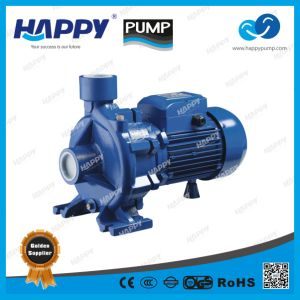 Domestic Water Pump (HTM) pictures & photos