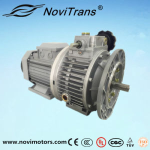Three Phase Permanent Magnet Synchronous Motor Flexible Motors with Speed Governor (YFM-90/G) pictures & photos