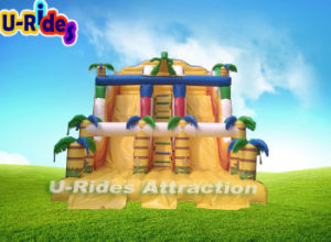 Dinosaure Dragon inflatable slide pictures & photos