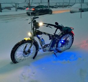 Hot Model for Winter Snow Fat Tyre Electric Bike 48V 1000W in North America and North Europe pictures & photos