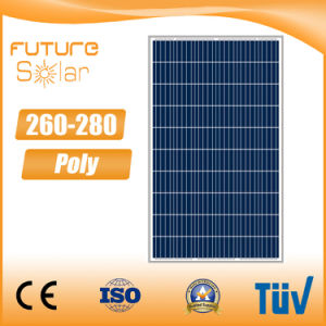 Futuresolar New Poly 4bb 280 Watt Solar Panel 260 W 270 W pictures & photos