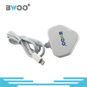 Hot Selling Mobile Phone USB Travel Charger with Cable pictures & photos