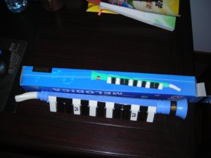 27 Key Melodica pictures & photos