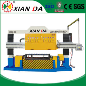 Apm-350-2000-12 Mable Granite Stone Cutting Machine for Column Polishing pictures & photos