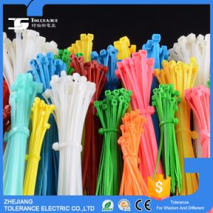 Self-Locking Wholesale Cable Tie (NYLON) pictures & photos