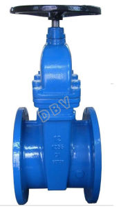 API Gate Valve pictures & photos