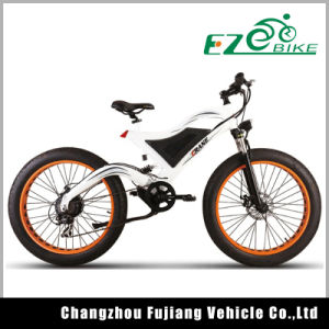 Fat Tire Chopper Bike Bicycle Hub Motor&Electric Bike pictures & photos
