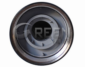 Hydraulic Oil Filter (84202794) (P569206) (84278070) pictures & photos