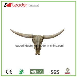 Hot Sale Long Horn Cow Skull Head Wall Hanging Sculpture with Antique White Color for Home Decoration pictures & photos