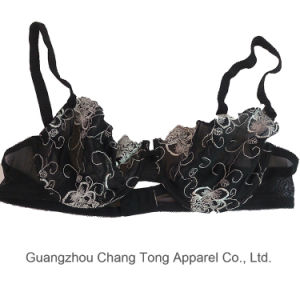 Chinese Name Brand Bra Sexy Net Bra pictures & photos