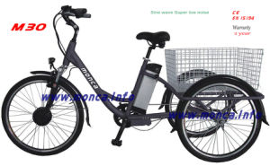 China Best City Electric Tricycle Urban E Bicycle E-Bike Fashion Bike Old People Outdoor Vehicle pictures & photos