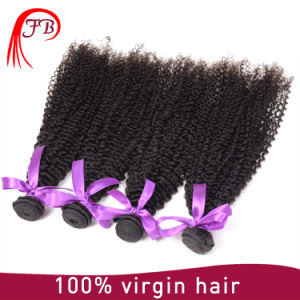 Unprocessed Best Factory Price Aaaaaa Mongolian Virgin Kinky Curly Hair pictures & photos
