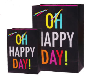 Promotion Custom Color Printing Paper Gift Bag pictures & photos