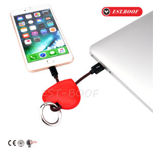 Case Decoration Key Ring Charger Wire USB Cable for iPhone pictures & photos