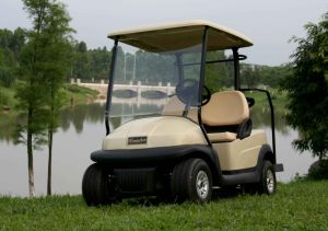Battery Operated 2 Seater Electric Golf Car pictures & photos
