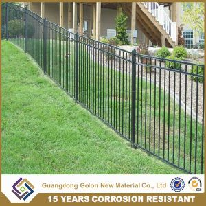 Fashion Western Style Wrought Iron Fence pictures & photos