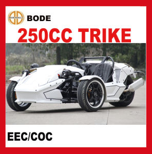 EEC 250cc Reverse Trike ATV (MC-369) pictures & photos