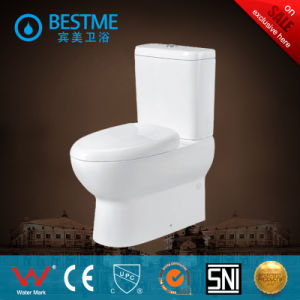Hot Sale Floor Mounted Washdown Elegated Toilet (BC-1312) pictures & photos
