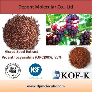 Hot Sell Grape Seed Extract, Proanthocyanidins (OPC) 90%, 95%, 98% pictures & photos